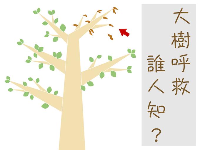 員山生態教育館:大樹呼救誰人知?
