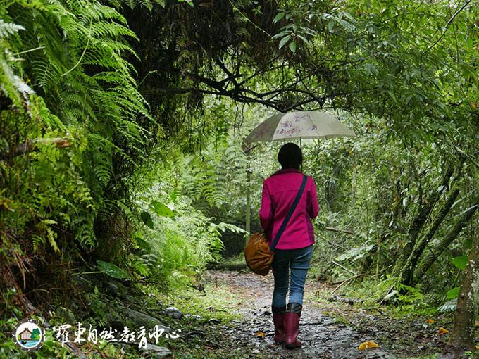 走進森林療育一下!