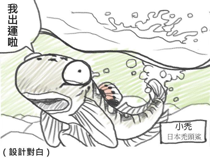 從河說起:溪望事件簿