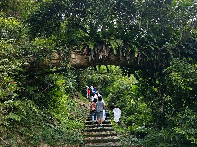 羅東自然教育中心:林場小學堂花絮