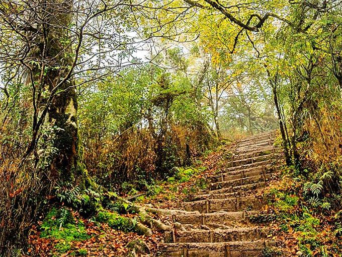 羅東自然教育中心:秋日的太平山景色