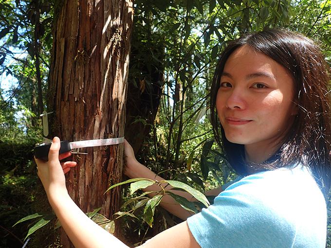 羅東自然教育中心-森林關鍵報告